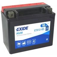 Baterie EXIDE - YTX12-BS (12V 10Ah), plus vpravo